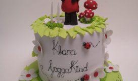 Cake for girls 1
