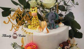 Cake for girls 48